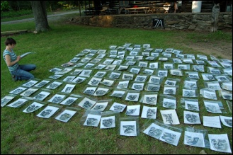 Portraits laid out in the grass.